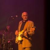 Louisiana Blues - Flyin' Saucers Gumbo Special